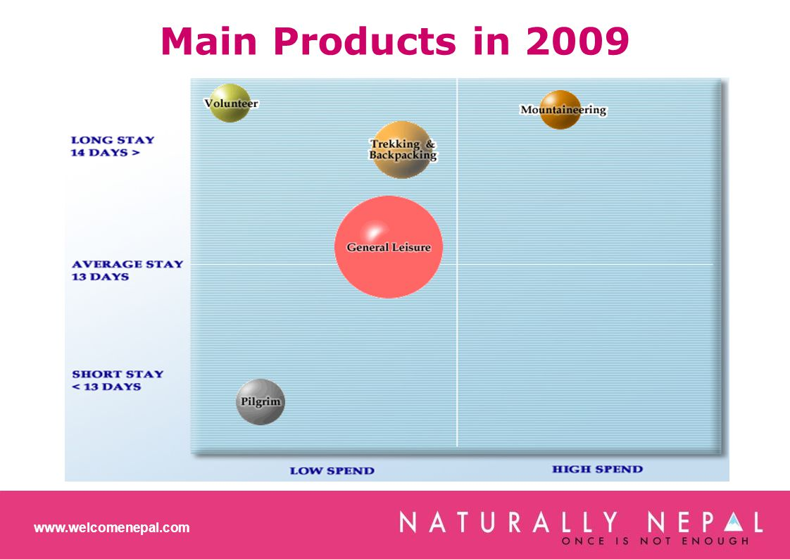 Main Products in 2009