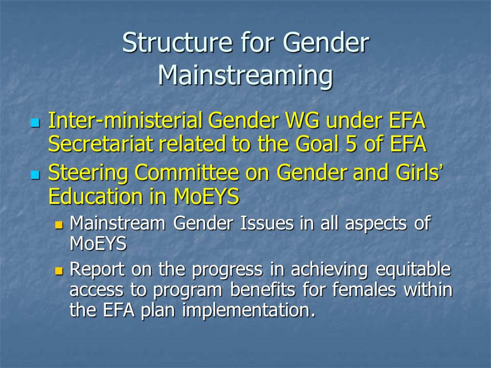 Structure for Gender Mainstreaming National Education For All Committee Early Childhood Care & Development Basic Education Life Skills Non-formal Education Gender Equality Quality Working Group EFA Secretariat General Steering Committee on Gender Mainstreaming TWG on Gender