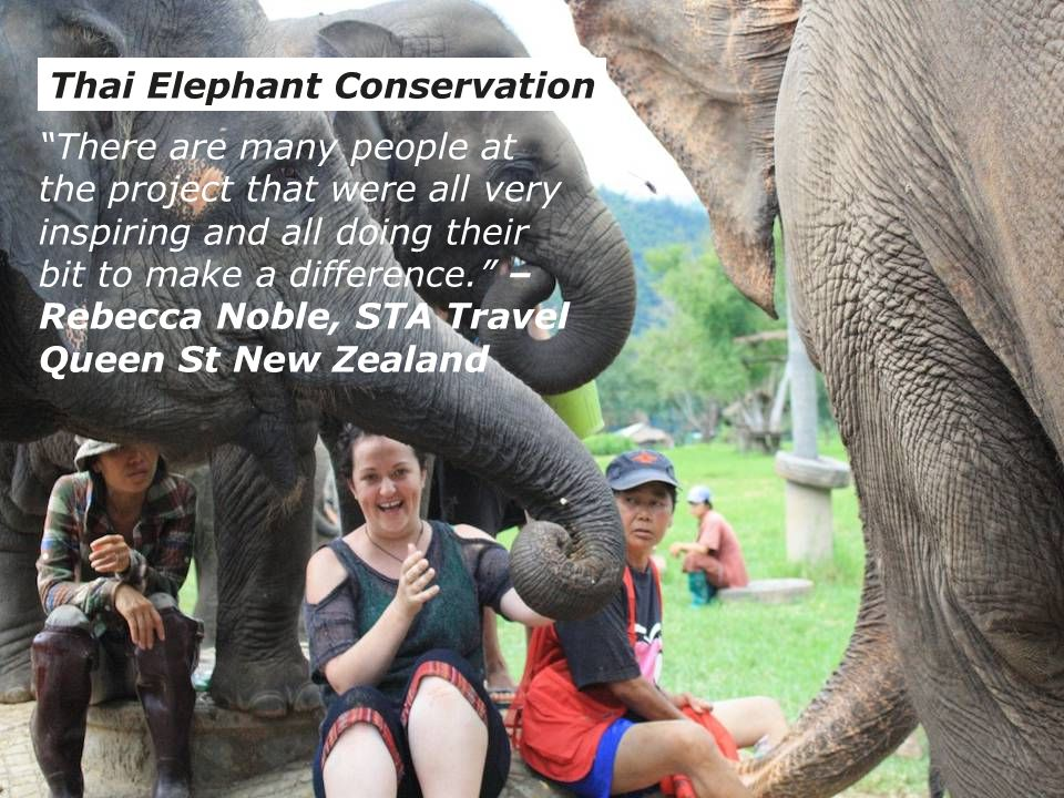 05/10/11Volunteer, Work & Learn Brochure Training16 Thai Elephant Conservation There are many people at the project that were all very inspiring and all doing their bit to make a difference. – Rebecca Noble, STA Travel Queen St New Zealand