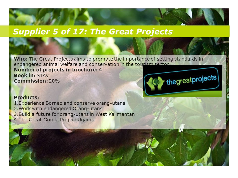 Supplier 5 of 17: The Great Projects Who: The Great Projects aims to promote the importance of setting standards in endangered animal welfare and conservation in the tourism sector.