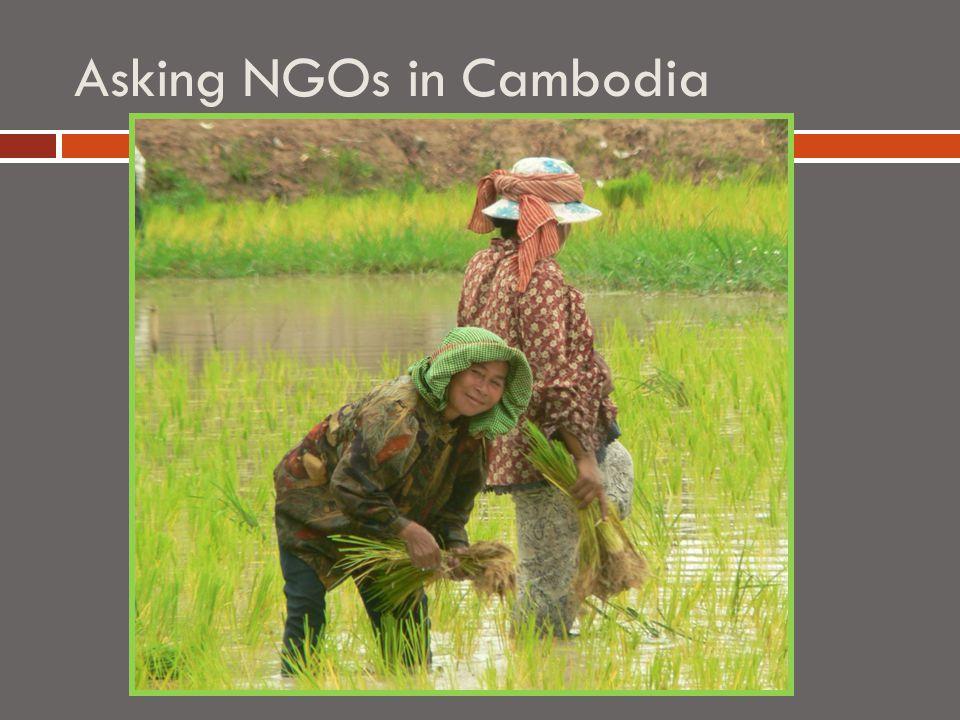 Asking NGOs in Cambodia