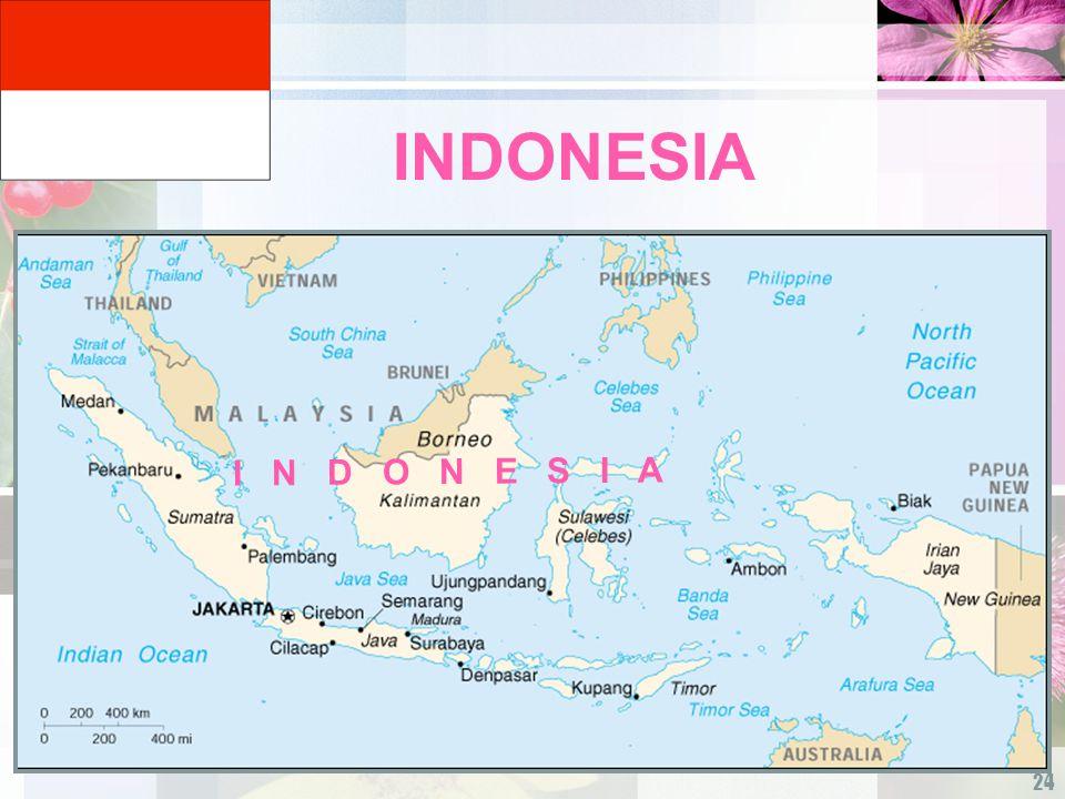 24 INDONESIA