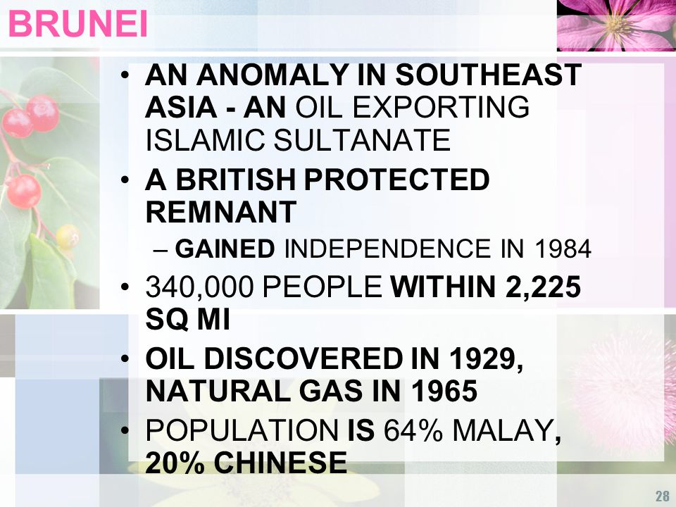 28 BRUNEI AN ANOMALY IN SOUTHEAST ASIA - AN OIL EXPORTING ISLAMIC SULTANATE A BRITISH PROTECTED REMNANT –GAINED INDEPENDENCE IN 1984 340,000 PEOPLE WITHIN 2,225 SQ MI OIL DISCOVERED IN 1929, NATURAL GAS IN 1965 POPULATION IS 64% MALAY, 20% CHINESE