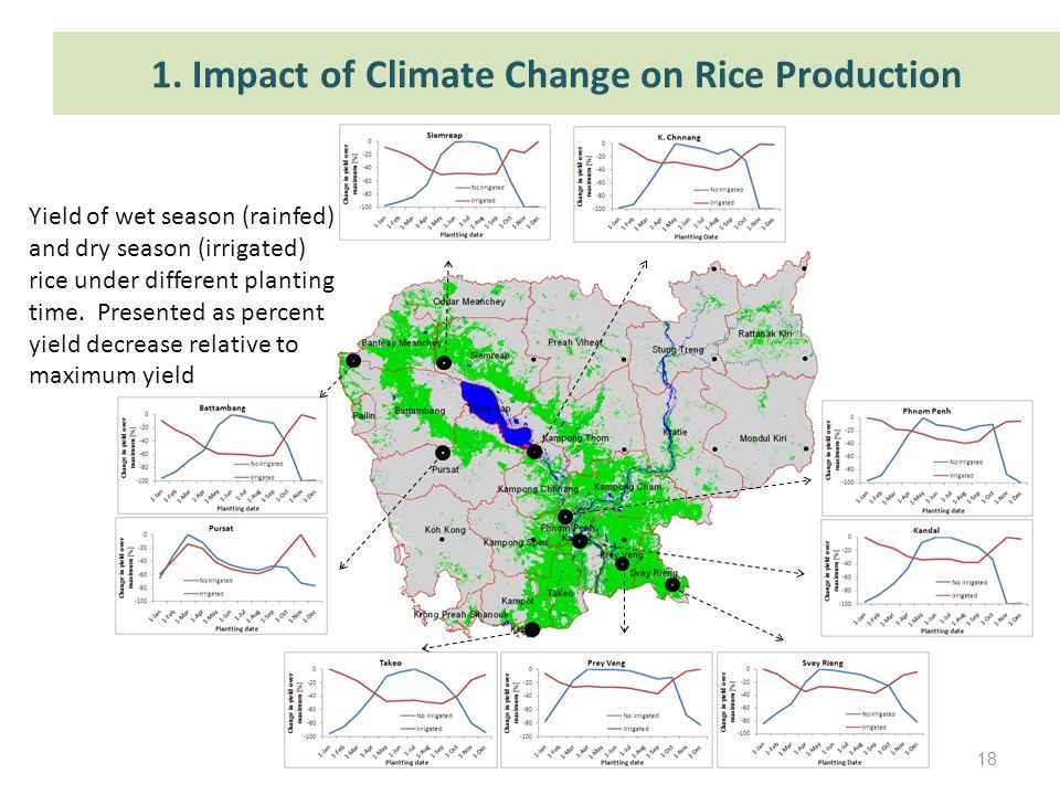 1. Impact of Climate Change on Rice Production Yield of wet season (rainfed) and dry season (irrigated) rice under different planting time. Presented