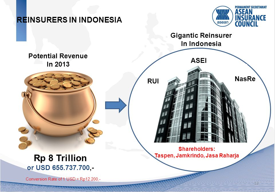 12 REINSURERS IN INDONESIA Rp 8 Trillion or USD 655.737.700,- Potential Revenue In 2013 Gigantic Reinsurer In Indonesia NasRe ASEI RUI Shareholders: Taspen, Jamkrindo, Jasa Raharja Conversion Rate of 1 USD = Rp12.200,-