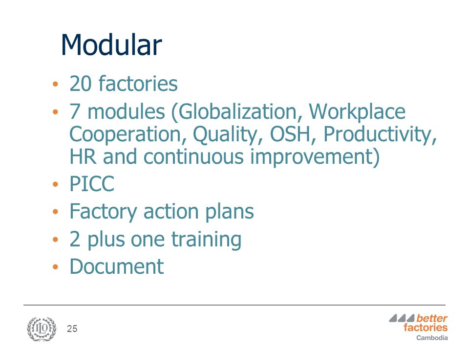 25 Modular 20 factories 7 modules (Globalization, Workplace Cooperation, Quality, OSH, Productivity, HR and continuous improvement) PICC Factory action plans 2 plus one training Document