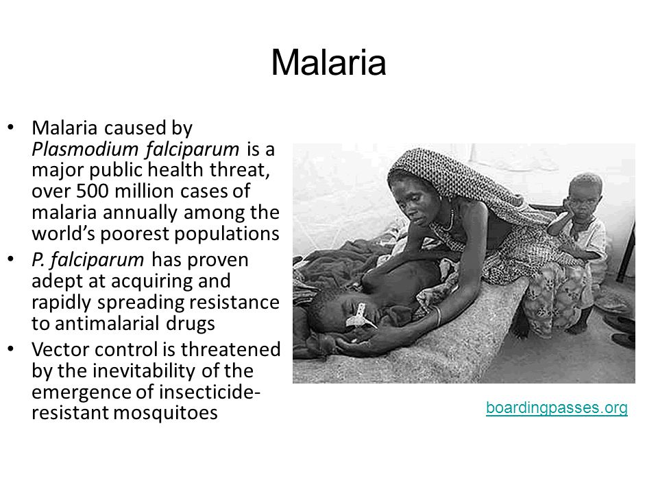 Malaria Malaria caused by Plasmodium falciparum is a major public health threat, over 500 million cases of malaria annually among the world's poorest populations P.