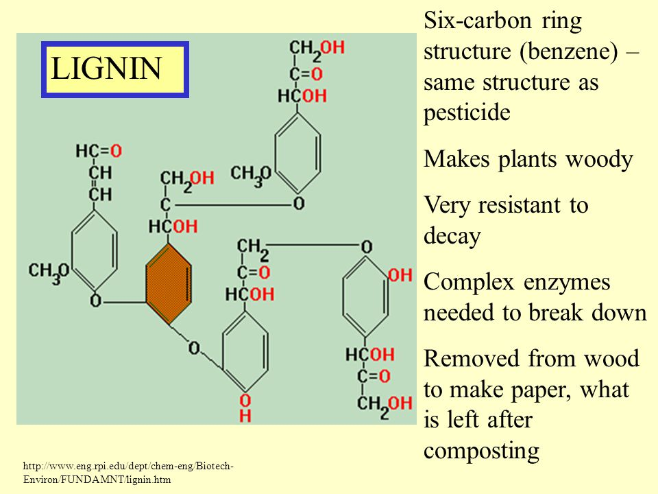 Six-carbon ring structure (benzene) – same structure as pesticide Makes plants woody Very resistant to decay Complex enzymes needed to break down Remo