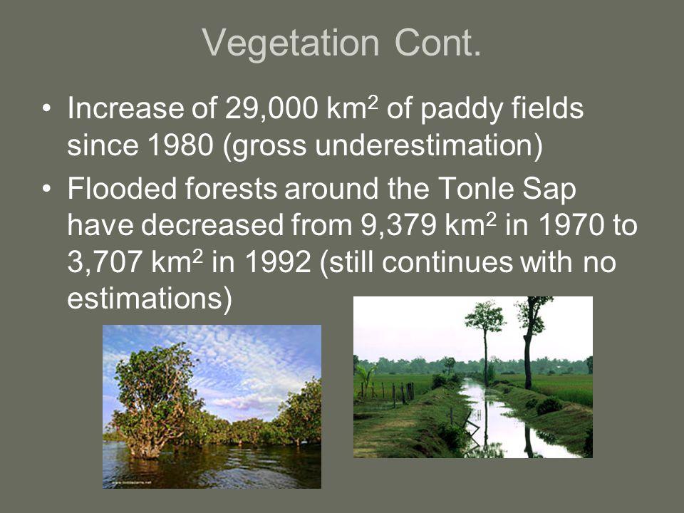 Vegetation Cont.
