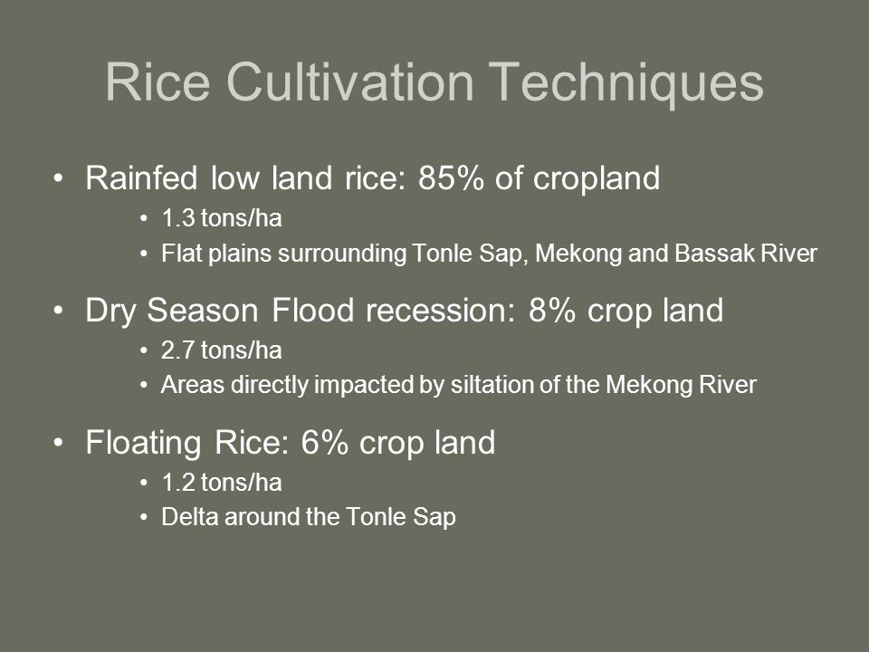 Rice Cultivation Techniques Rainfed low land rice: 85% of cropland 1.3 tons/ha Flat plains surrounding Tonle Sap, Mekong and Bassak River Dry Season Flood recession: 8% crop land 2.7 tons/ha Areas directly impacted by siltation of the Mekong River Floating Rice: 6% crop land 1.2 tons/ha Delta around the Tonle Sap