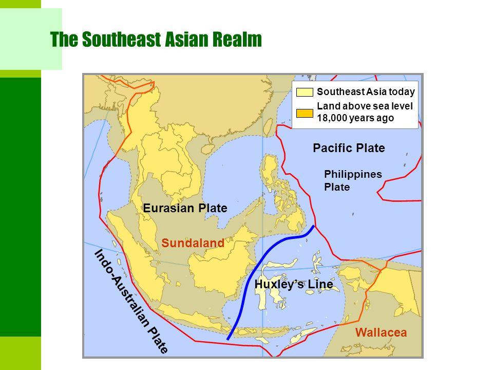The Southeast Asian Realm Eurasian Plate Indo-Australian Plate Pacific Plate Huxley's Line Sundaland Wallacea Land above sea level 18,000 years ago So