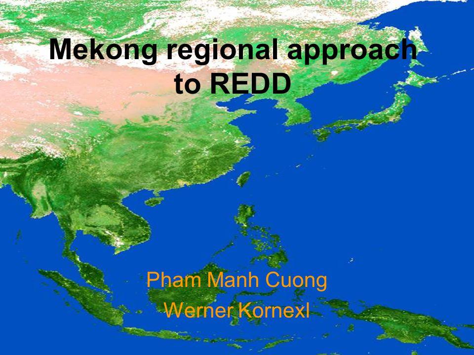Mekong regional approach to REDD Pham Manh Cuong Werner Kornexl