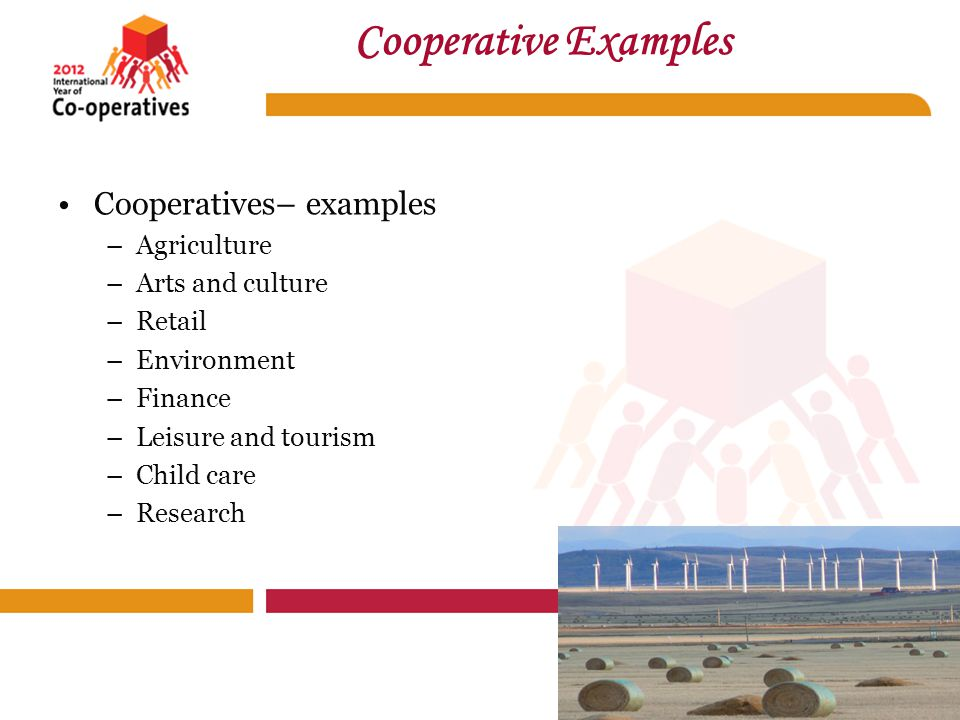 Cooperatives– examples –Agriculture –Arts and culture –Retail –Environment –Finance –Leisure and tourism –Child care –Research Cooperative Examples