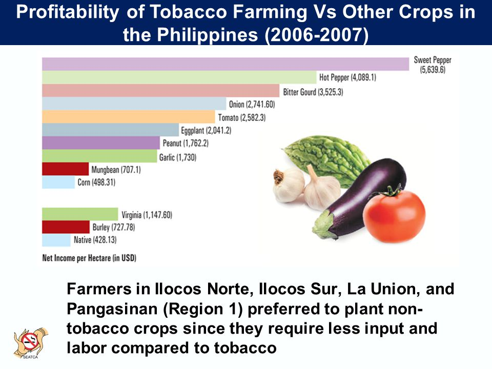 Profitability of Tobacco Farming Vs Other Crops in the Philippines (2006-2007) Farmers in Ilocos Norte, Ilocos Sur, La Union, and Pangasinan (Region 1) preferred to plant non- tobacco crops since they require less input and labor compared to tobacco