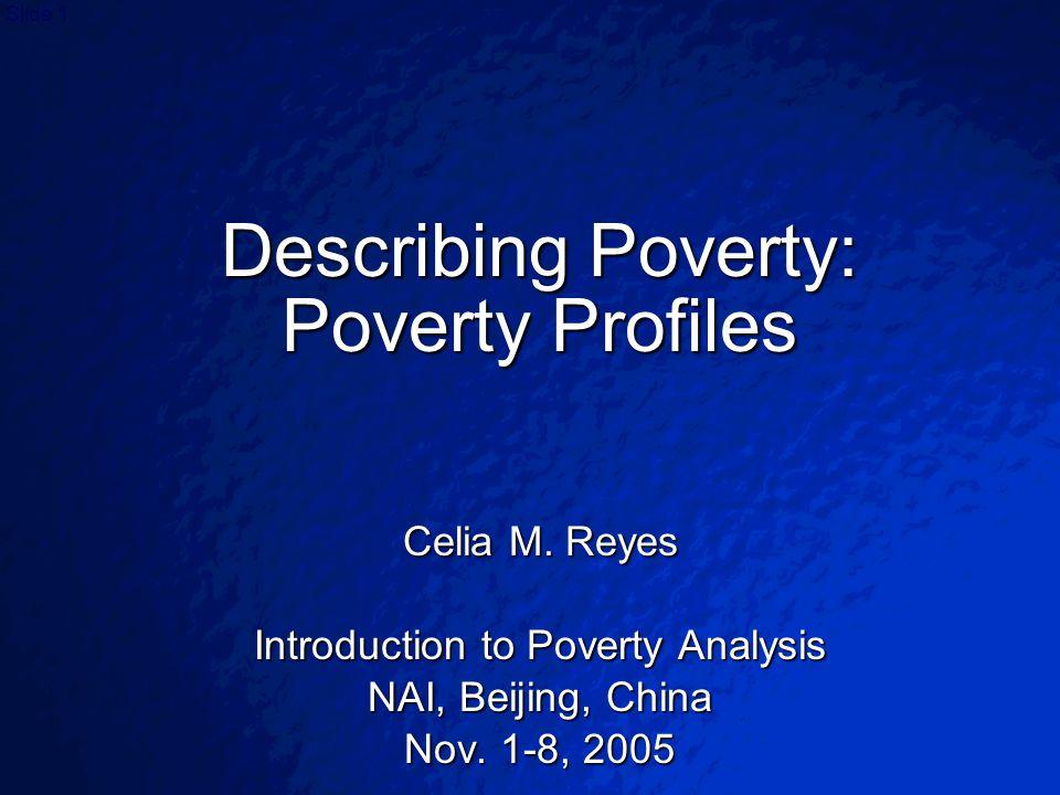 © 2003 By Default!Slide 1 Describing Poverty: Poverty Profiles Celia M.