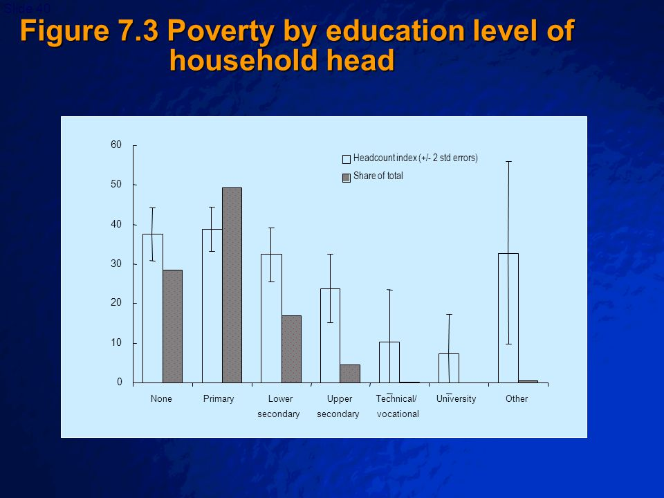 © 2003 By Default!Slide 40 0 10 20 30 40 50 60 NonePrimaryLower secondary Upper secondary Technical/ vocational UniversityOther Headcount index (+/- 2 std errors) Share of total Figure 7.3 Poverty by education level of household head