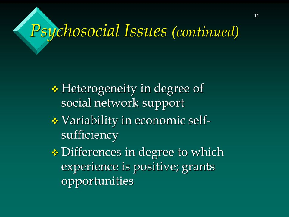 14 Psychosocial Issues (continued)  Heterogeneity in degree of social network support  Variability in economic self- sufficiency  Differences in de