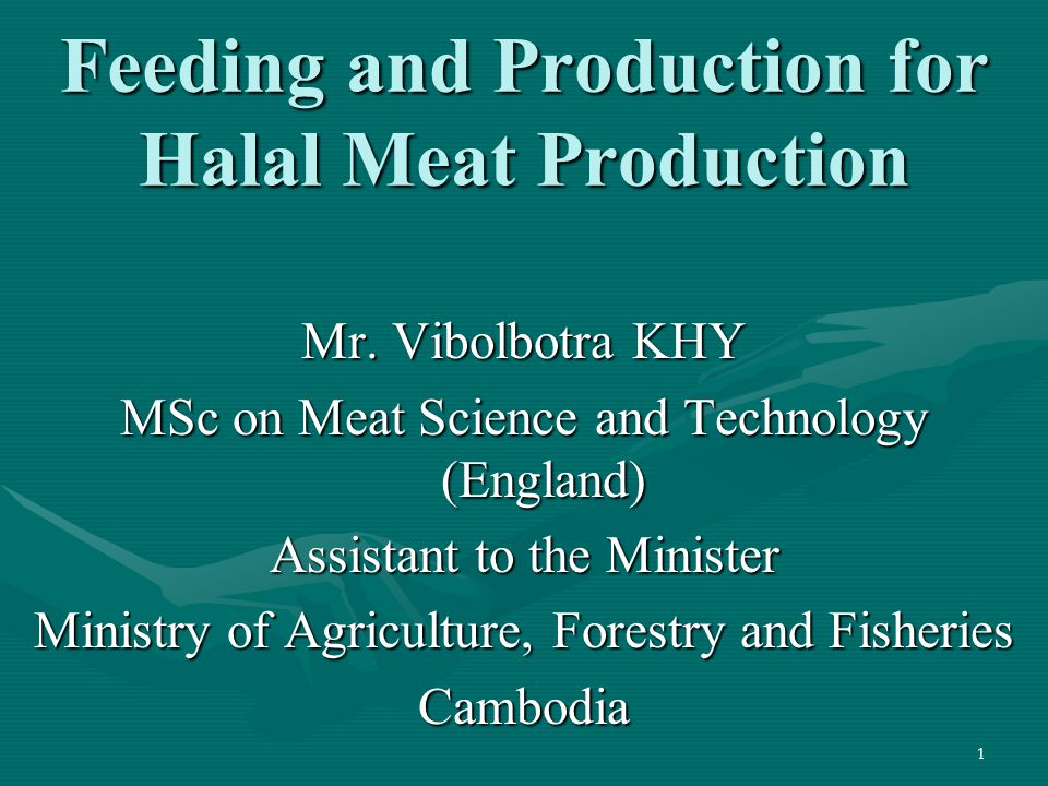 1 Feeding and Production for Halal Meat Production Mr. Vibolbotra KHY MSc on Meat Science and Technology (England) Assistant to the Minister Ministry
