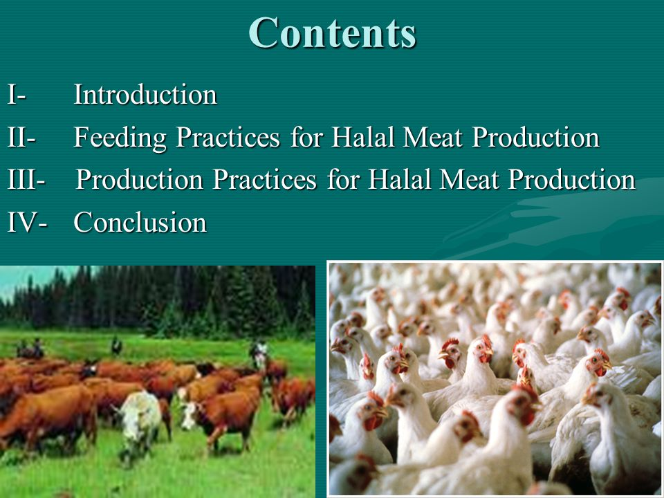 2Contents I-Introduction II-Feeding Practices for Halal Meat Production III- Production Practices for Halal Meat Production IV-Conclusion