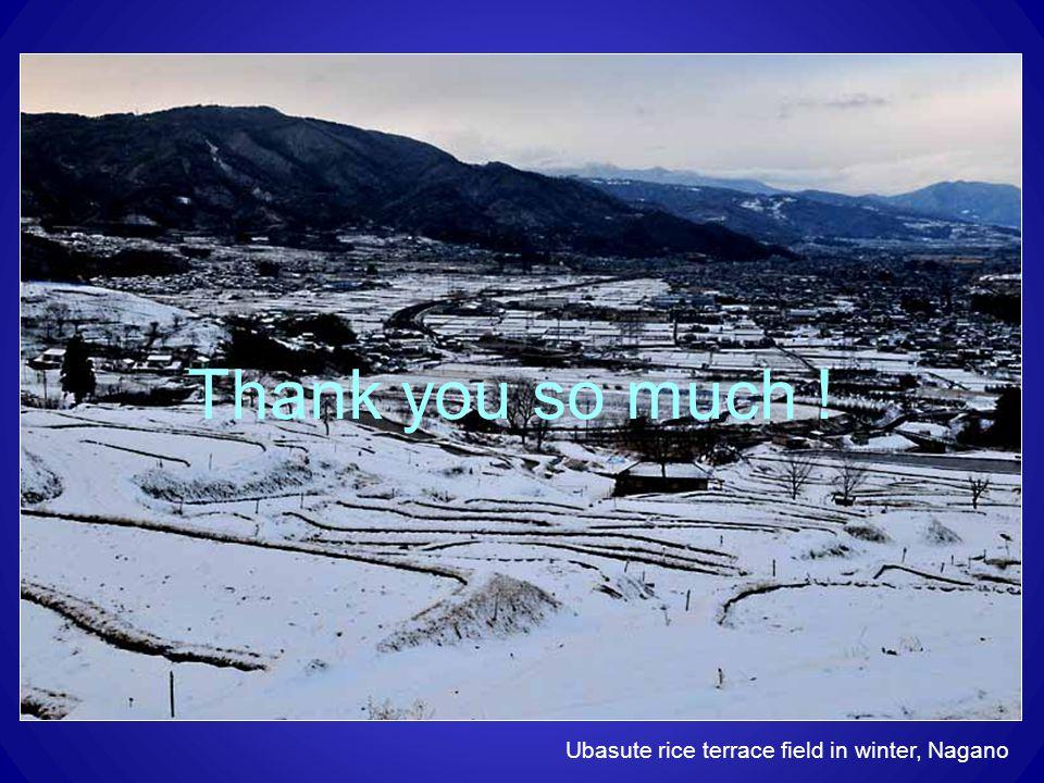 Thank you so much ! Ubasute rice terrace field in winter, Nagano