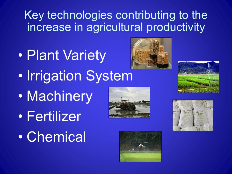Key technologies contributing to the increase in agricultural productivity Plant Variety Irrigation System Machinery Fertilizer Chemical
