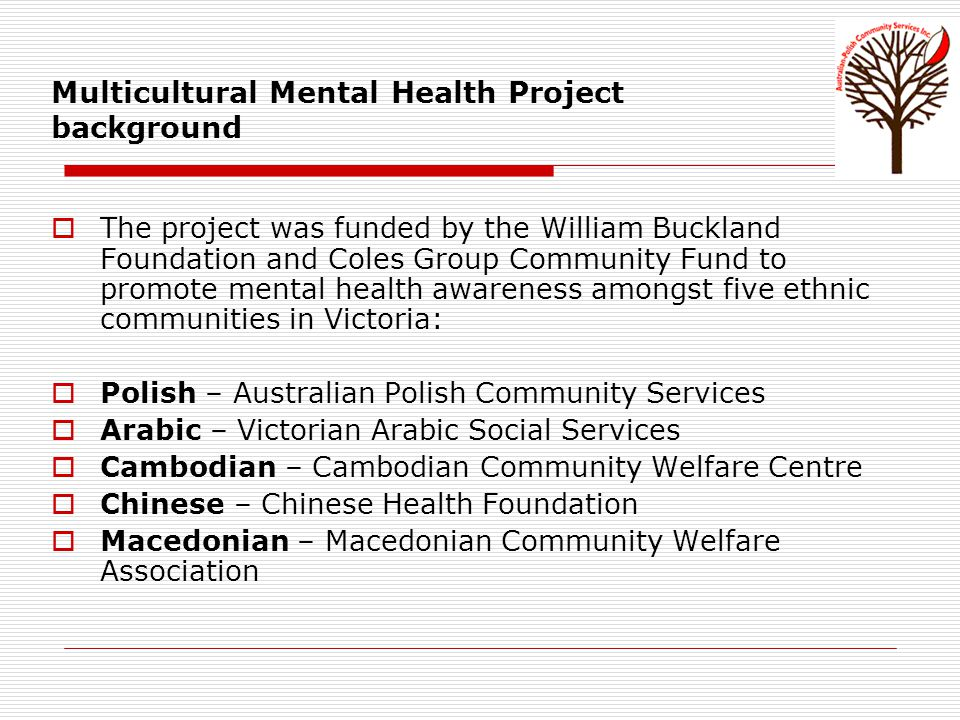 Literature Stolk, Y., Minas, H & Klimidis, S., 2008, Access to mental health services in Victoria.