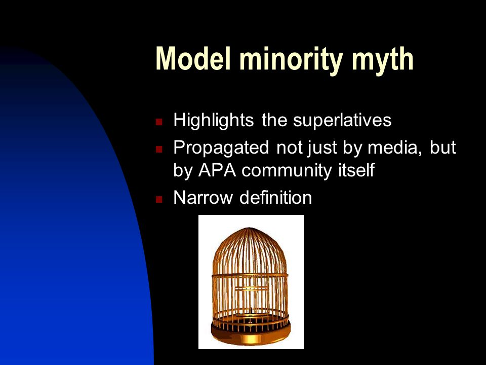 Model minority myth Highlights the superlatives Propagated not just by media, but by APA community itself Narrow definition