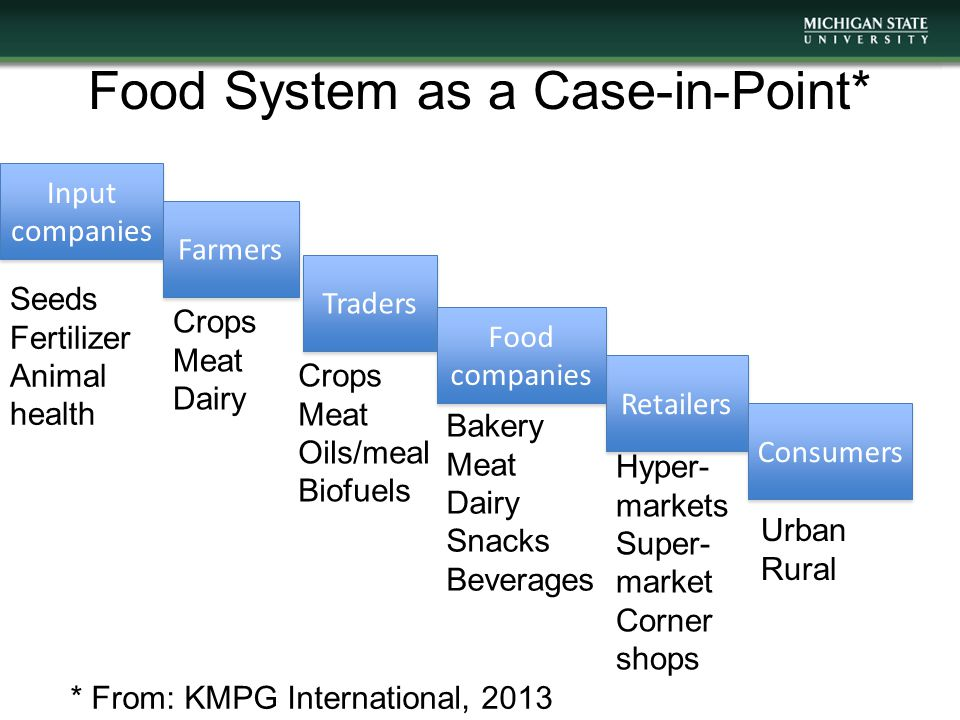 Food System as a Case-in- Point* Input companies Farmers Traders Retailers Consumers Food companies * From: KMPG International, 2013 Seeds Fertilizer