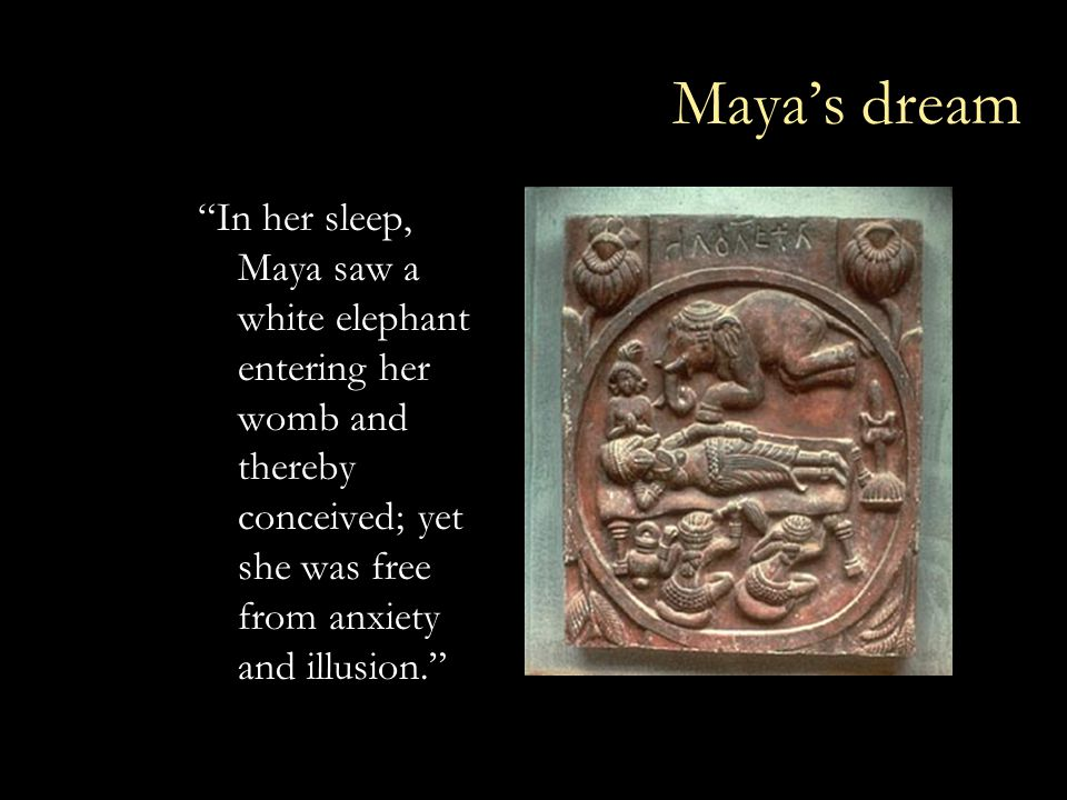 Maya's dream In her sleep, Maya saw a white elephant entering her womb and thereby conceived; yet she was free from anxiety and illusion.