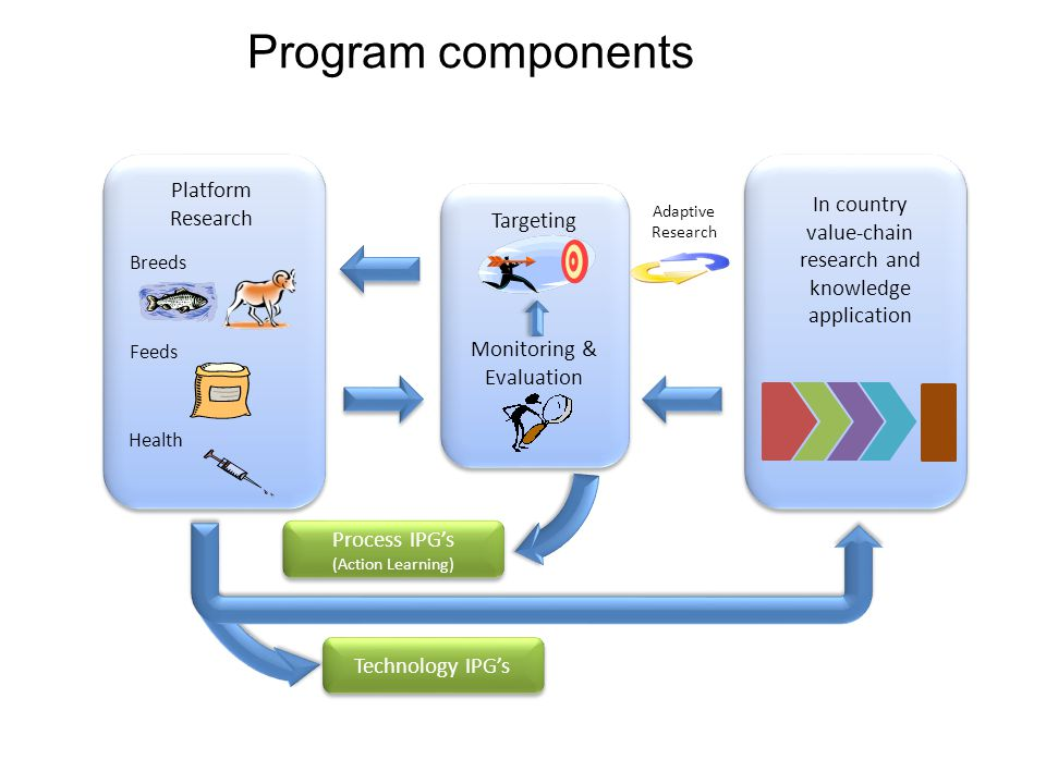 Program components In country value-chain research and knowledge application Platform Research Breeds Feeds Health Targeting Monitoring & Evaluation Technology IPG's Process IPG's (Action Learning) Process IPG's (Action Learning) Adaptive Research