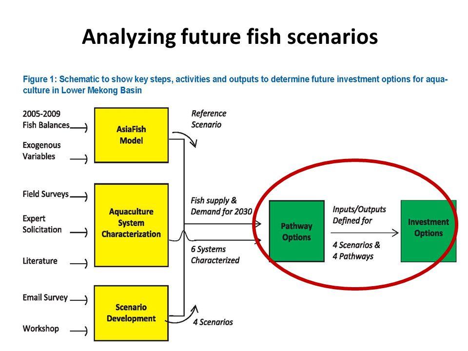 Analyzing future fish scenarios