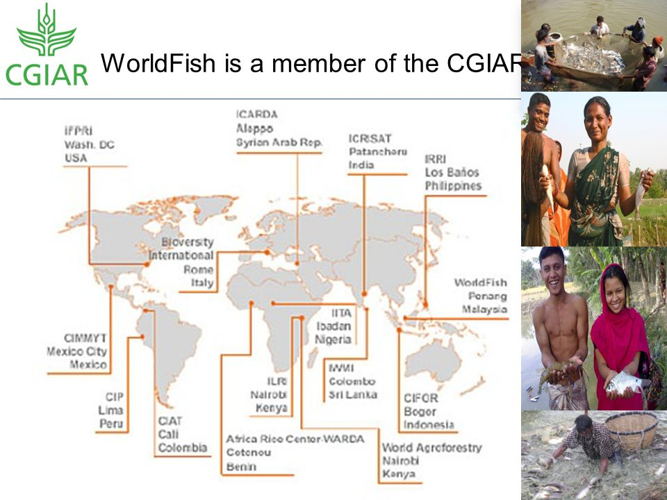 WorldFish is a member of the CGIAR