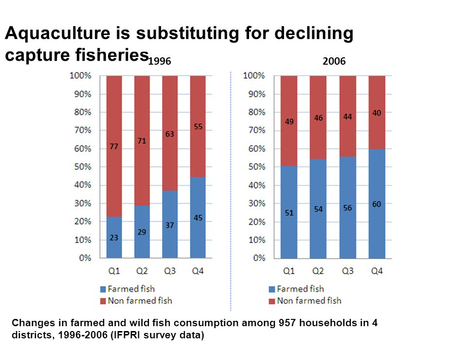 Aquaculture is substituting for declining capture fisheries 1996 2006 Changes in farmed and wild fish consumption among 957 households in 4 districts, 1996-2006 (IFPRI survey data)