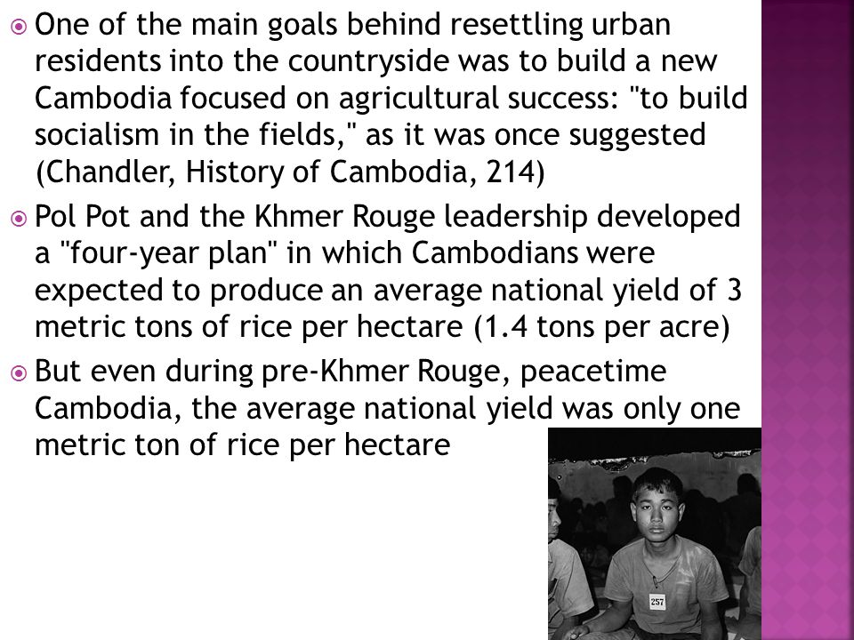  One of the main goals behind resettling urban residents into the countryside was to build a new Cambodia focused on agricultural success: to build socialism in the fields, as it was once suggested (Chandler, History of Cambodia, 214)  Pol Pot and the Khmer Rouge leadership developed a four-year plan in which Cambodians were expected to produce an average national yield of 3 metric tons of rice per hectare (1.4 tons per acre)  But even during pre-Khmer Rouge, peacetime Cambodia, the average national yield was only one metric ton of rice per hectare
