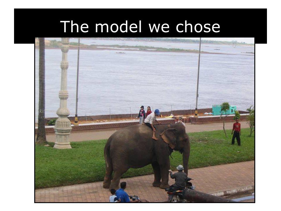 The model we chose