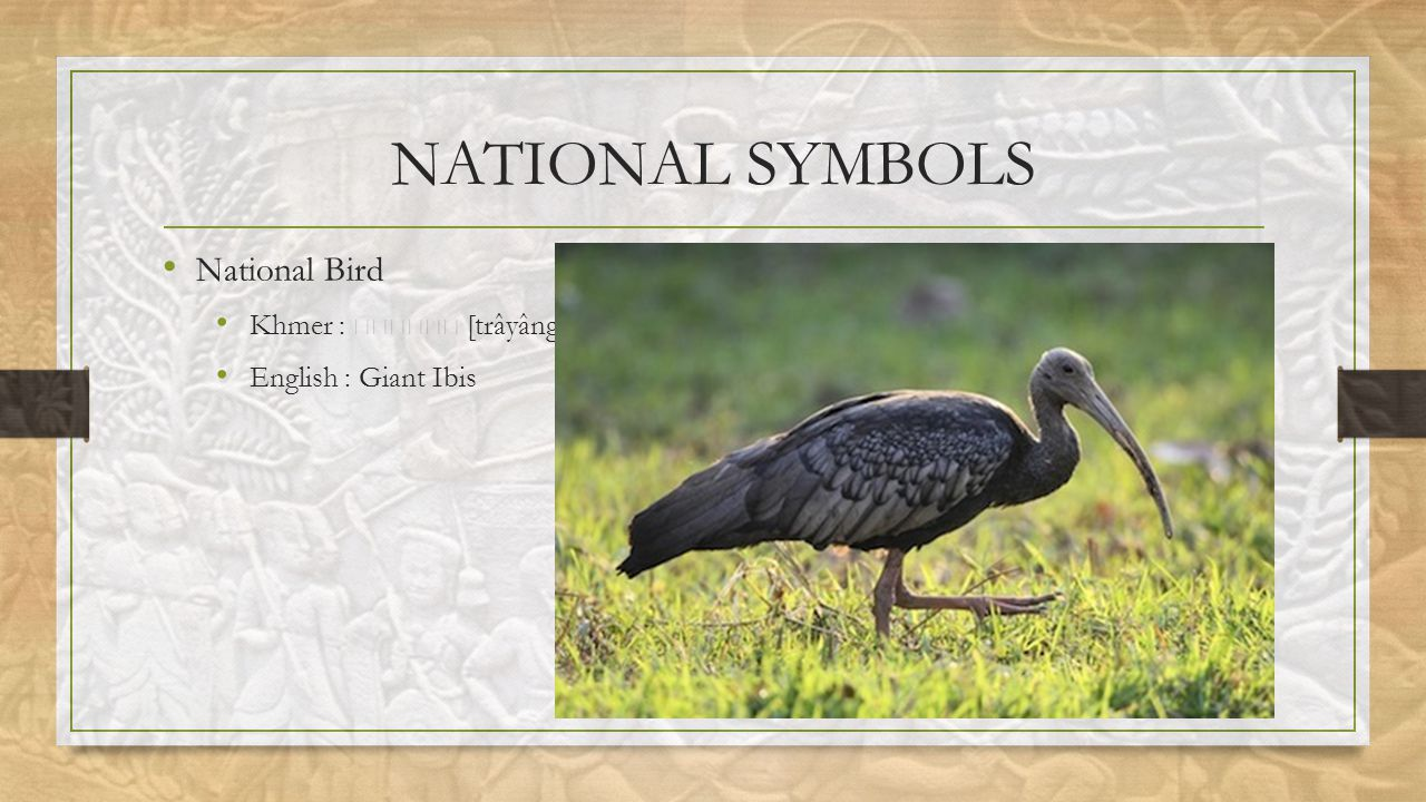 NATIONAL SYMBOLS National Bird Khmer : [trâyâng] English : Giant Ibis