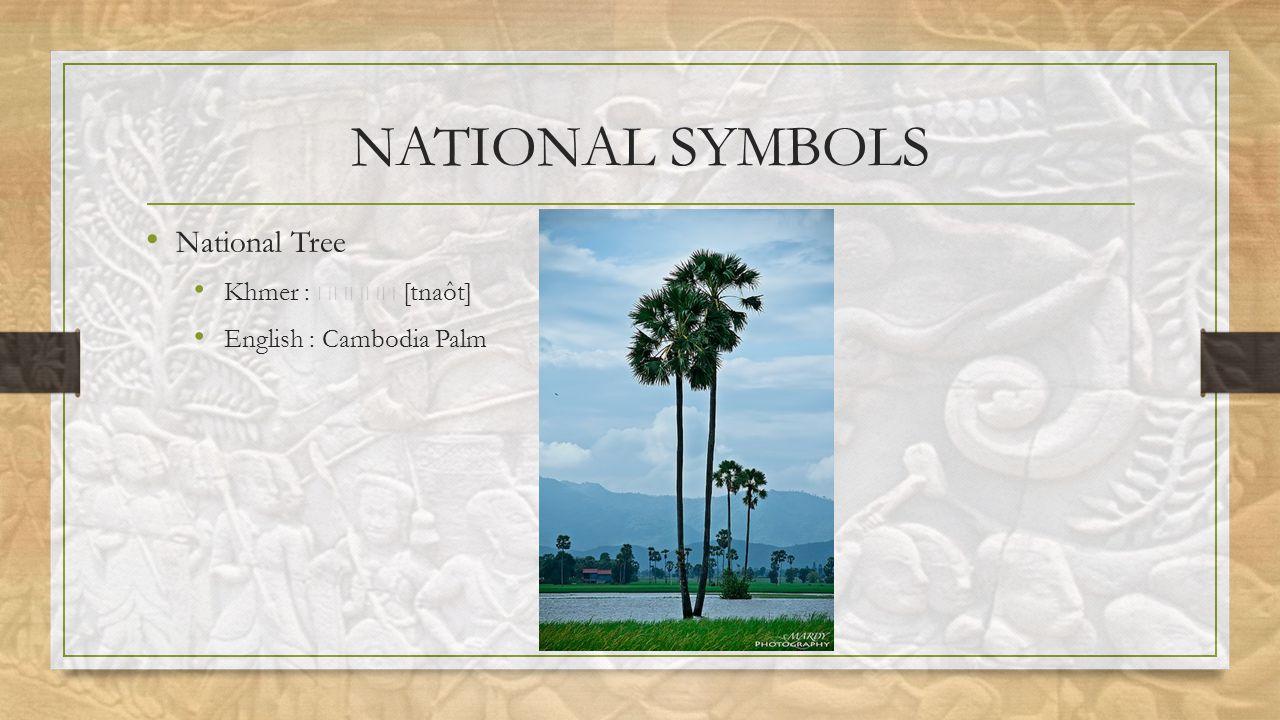 NATIONAL SYMBOLS National Tree Khmer : [tnaôt] English : Cambodia Palm