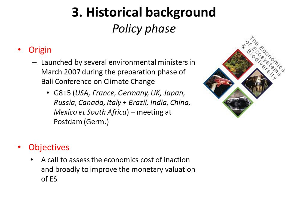 3. Historical background Policy phase Origin – Launched by several environmental ministers in March 2007 during the preparation phase of Bali Conferen