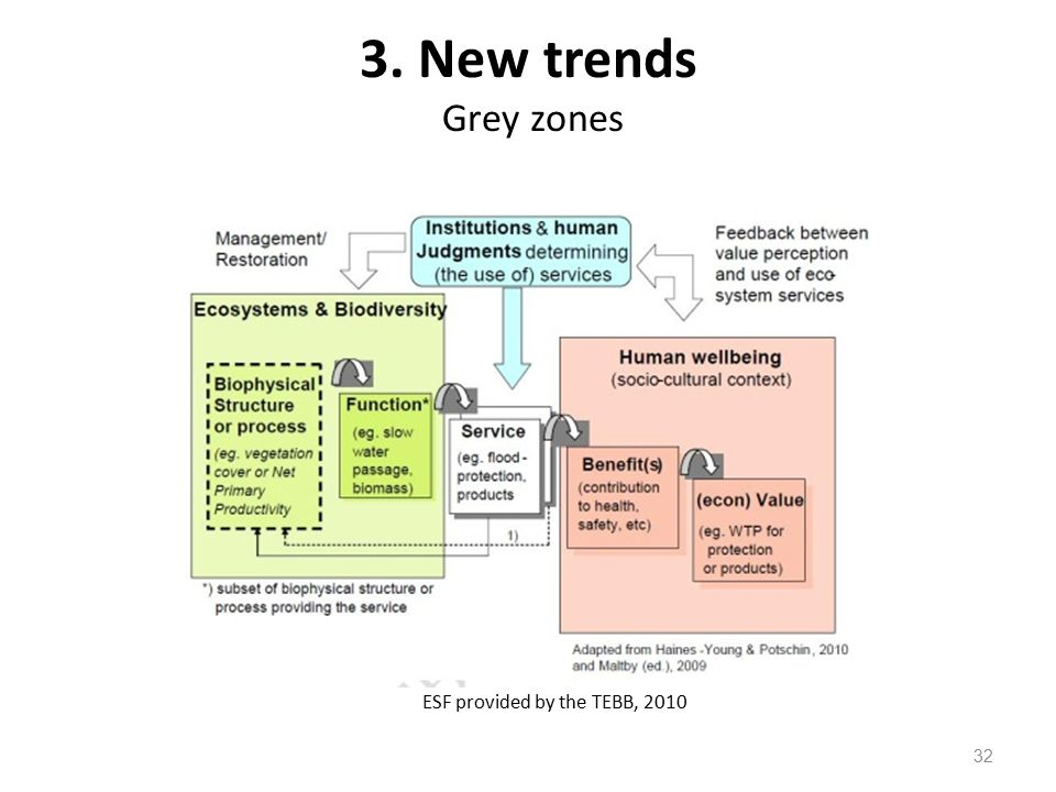 32 ESF provided by the TEBB, 2010 3. New trends Grey zones