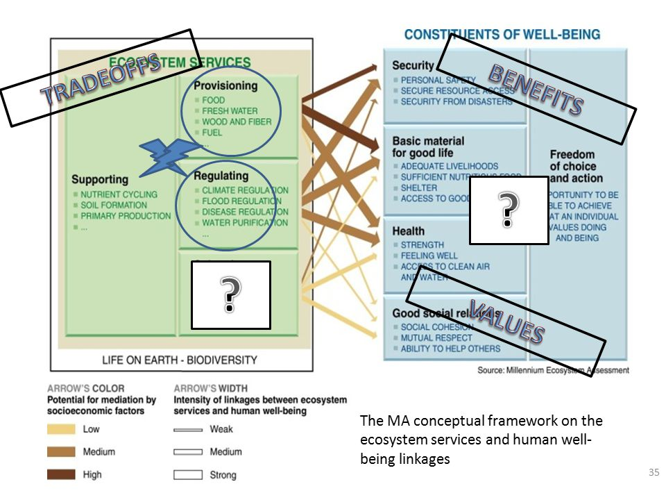 35 The MA conceptual framework on the ecosystem services and human well- being linkages