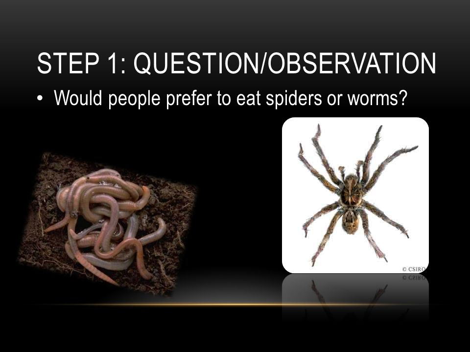 STEP 1: QUESTION/OBSERVATION Would people prefer to eat spiders or worms?