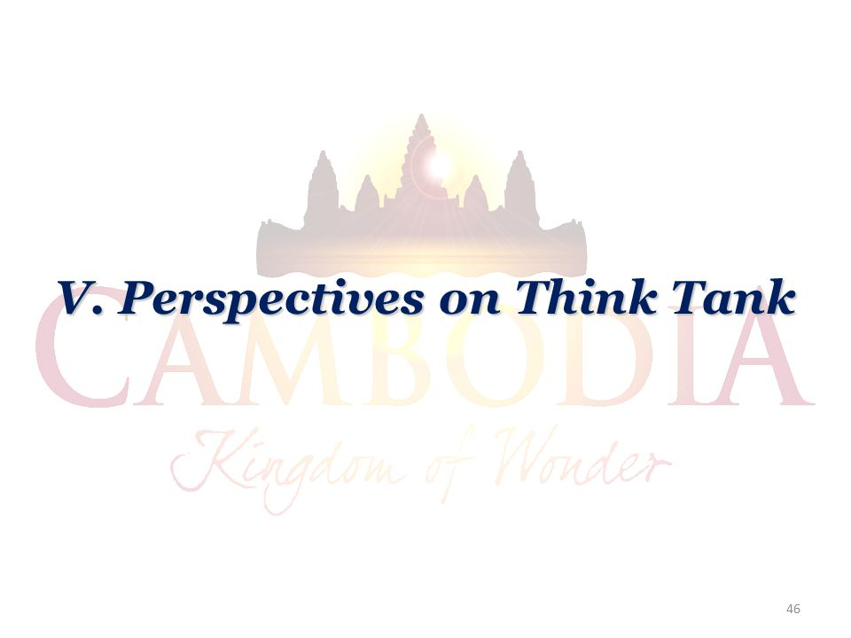 V. Perspectives on Think Tank 46