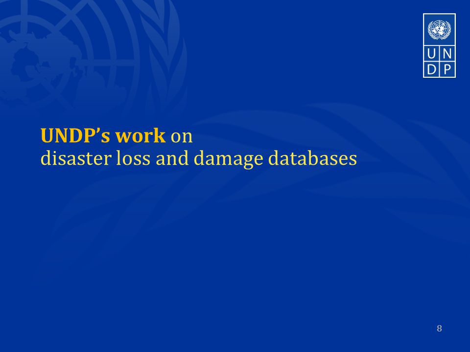 UNDP's work on disaster loss and damage databases 8