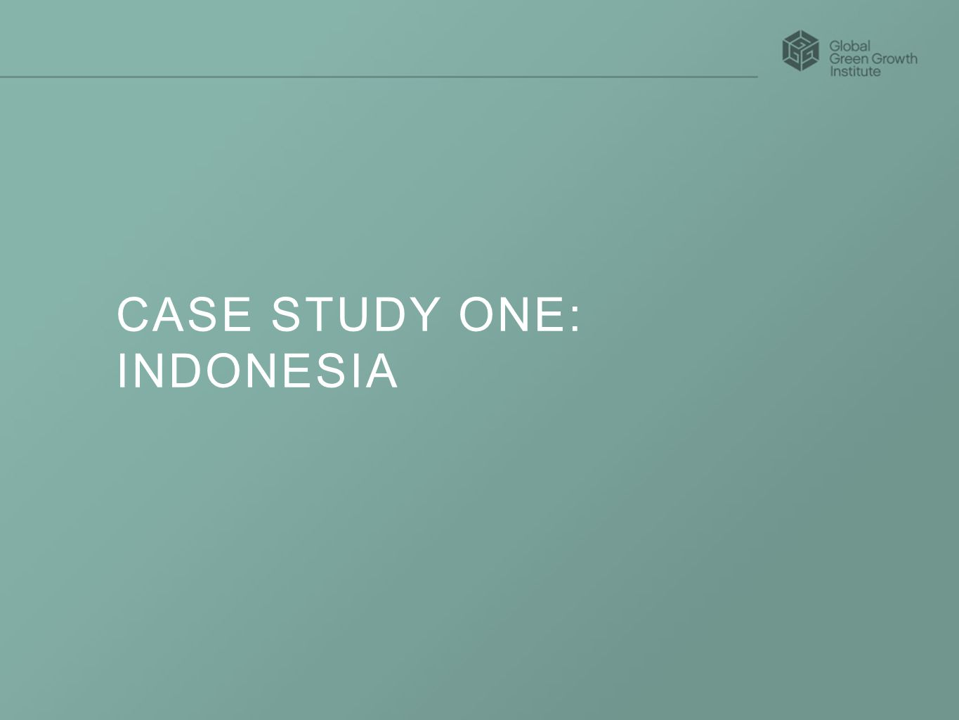 CASE STUDY ONE: INDONESIA