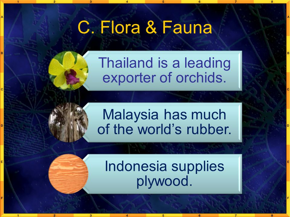C. Flora & Fauna Thailand is a leading exporter of orchids. Malaysia has much of the world's rubber. Indonesia supplies plywood.
