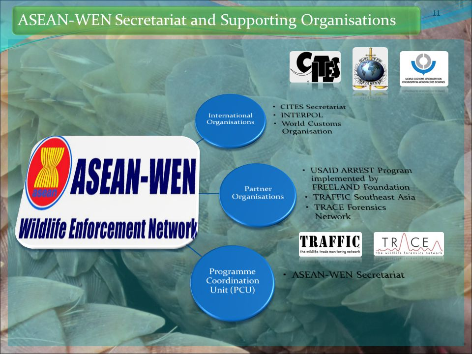 11 ASEAN-WEN Secretariat and Supporting Organisations