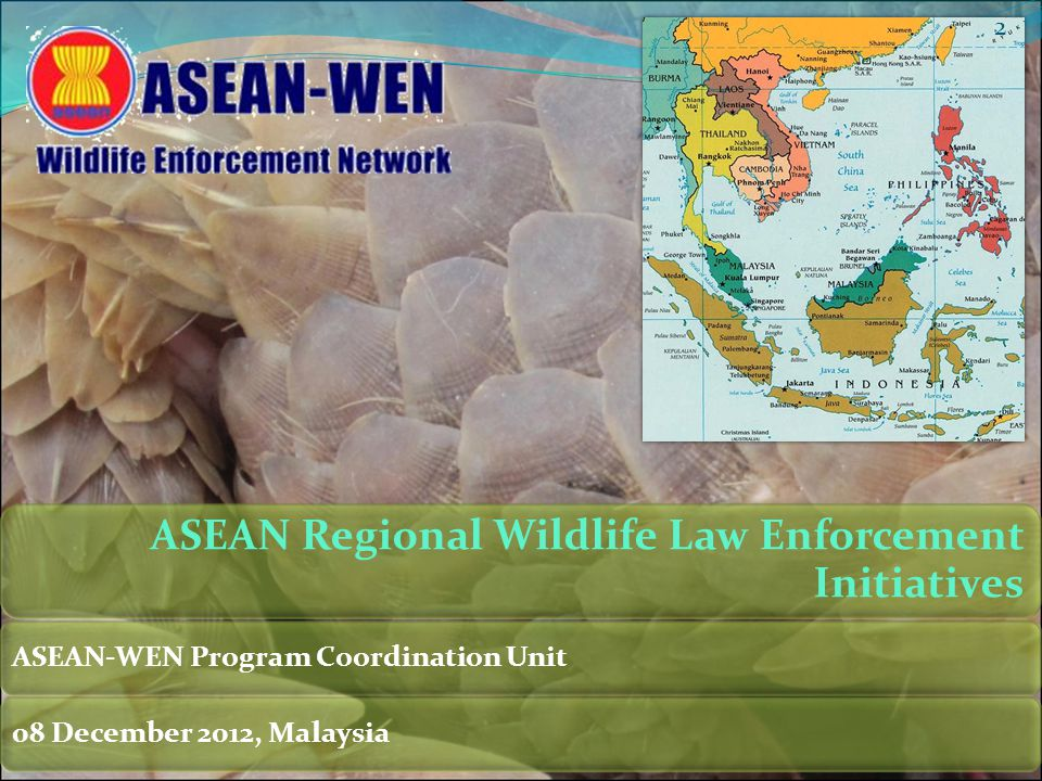Wildlife Trade RegulationSpecies IdentificationProtected Areas EnforcementInvestigation and DetectionWildlife Forensics