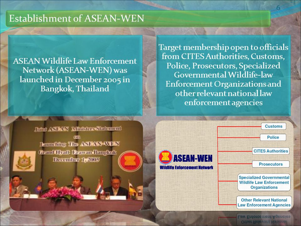 Establishment of ASEAN-WEN 6 ASEAN Wildlife Law Enforcement Network (ASEAN-WEN) was launched in December 2005 in Bangkok, Thailand Target membership open to officials from CITES Authorities, Customs, Police, Prosecutors, Specialized Governmental Wildlife-law Enforcement Organizations and other relevant national law enforcement agencies