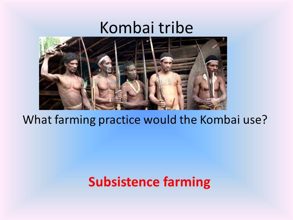 Kombai tribe What farming practice would the Kombai use? Subsistence farming
