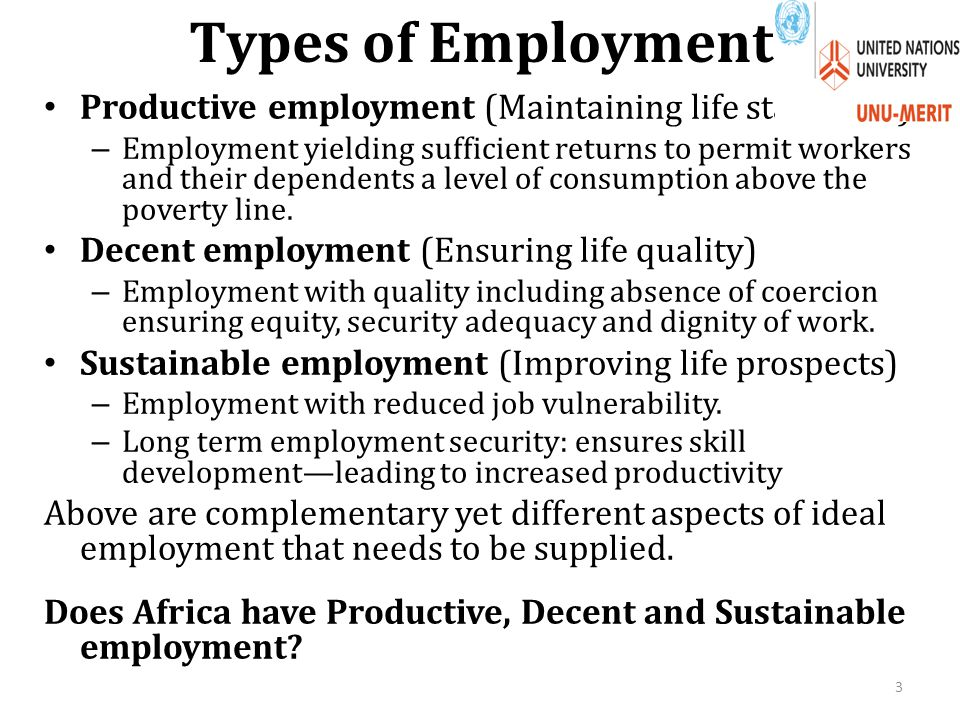 Types of Employment Productive employment (Maintaining life standards) – Employment yielding sufficient returns to permit workers and their dependents a level of consumption above the poverty line.